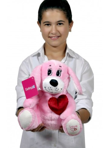 30 cm Plush Dog with a Heart